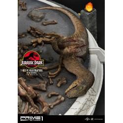 zabity velociraptor